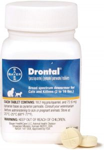 Drontal Broad Spectrum Dewormer