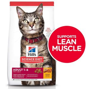 Hill's Science Diet Dry Cat Food Best Dry Cat Food