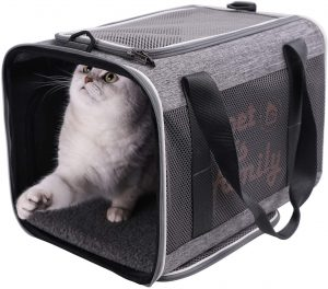 Petisfam Large Cat Carrier