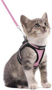 Rabbitgoo Cat Harness And Leash Set