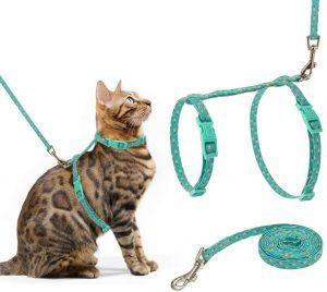 Scirokko Cat Harness And Leash Set