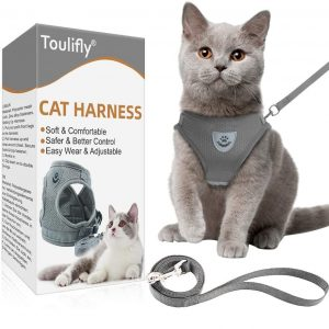 Toulifly Cat Harness