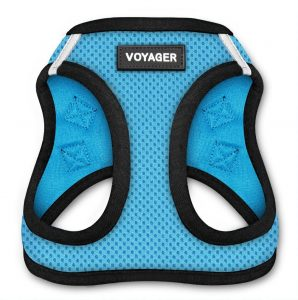 Voyager Step-in all-weather Harness